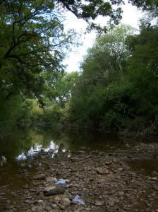 Photo of Salado Creek, near the Oakwell Trailhead