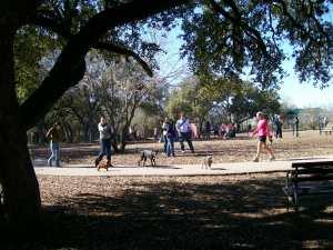 Photo of McAllister Park Dog Park.