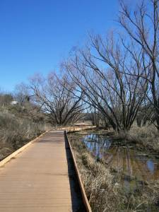 Photo of the Morningstar Boardwalk along the Salado Creek Greenway.